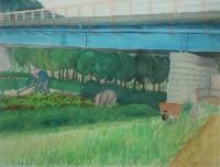 橋の下の畑